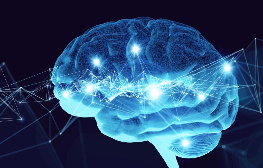 Sokratix - Du bist was du denkst. Philosophie und Neurobiologie